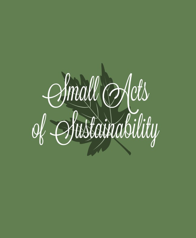 small-acts-of-sustainability